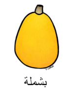 Loquat Arabic