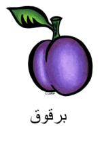 Plum Arabic