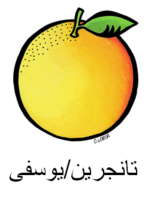 Tangerine Arabic