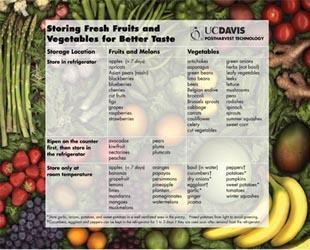 Storing Fresh Fruits & Vegetables for Better Taste