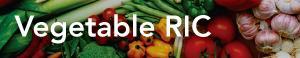 vegetable-ric